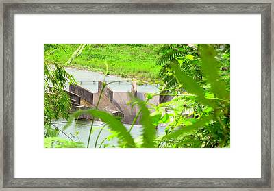 Lake Overflow Framed Print