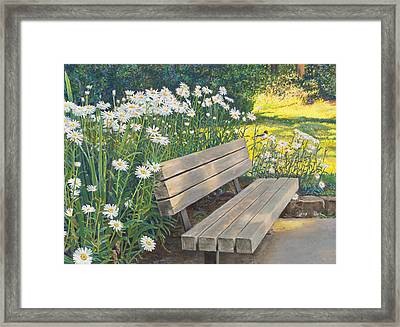 Lake Padden Series - Memorial Bench Of Judy Winter Framed Print