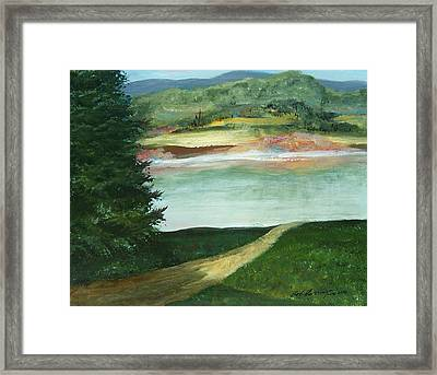 Lake Path Framed Print