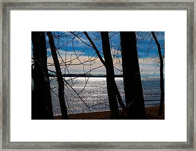 Framed Print featuring the photograph Lake Romance by Valentino Visentini