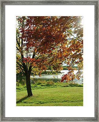 Framed Print featuring the photograph Lake Shore Afternoon by Michael Flood