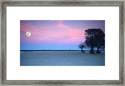 Lake Shore Evening Framed Print by Donald Schwartz