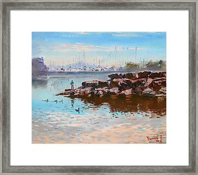 Lake Shore Mississauga Toronto  Framed Print by Ylli Haruni