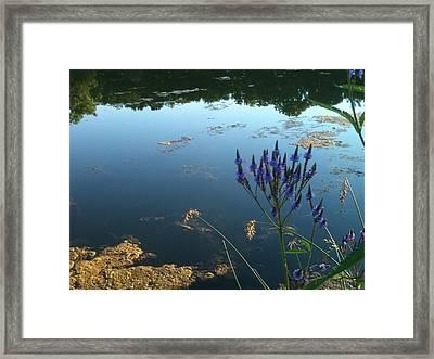 Lake Side Framed Print by Trish Hale
