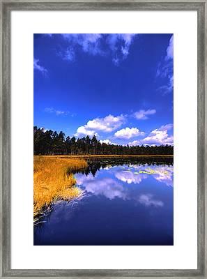 Lake Skaistes Framed Print by Deividas Kavoliunas