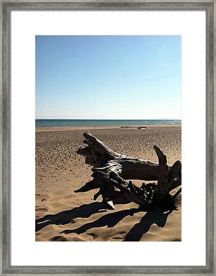 Lake Superior Driftwood Framed Print