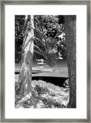 Framed Print featuring the photograph Lake Tahoe by Sherri Meyer
