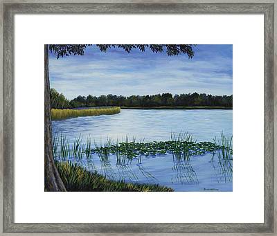 Lake Tarpon Shoreline On A Cloudy Day Framed Print
