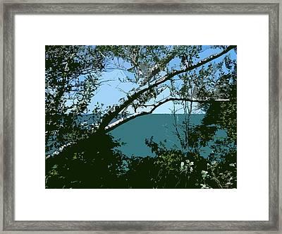 Lake Through The Trees Framed Print
