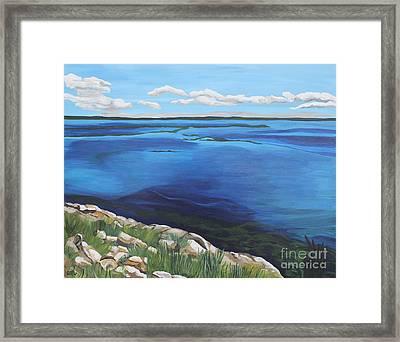 Lake Toho Framed Print