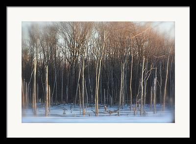 Indiana Winters Mixed Media Framed Prints