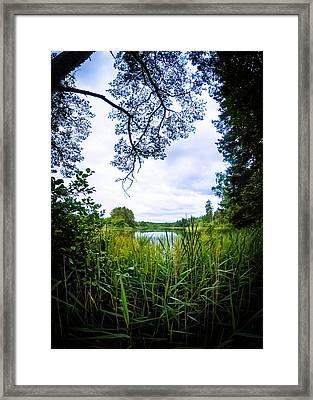 Lake View Framed Print by Nicklas Gustafsson
