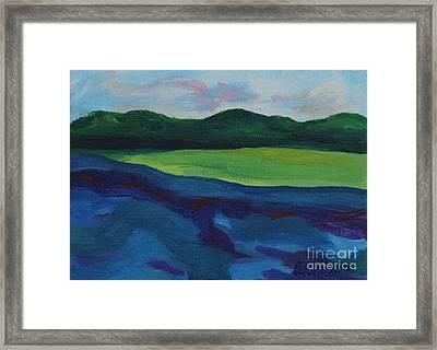 Lake Visit Framed Print by Annette M Stevenson