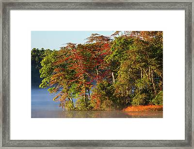 Lake Waban Fall Foliage Framed Print