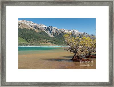Lake Wakatipu Framed Print by Werner Padarin