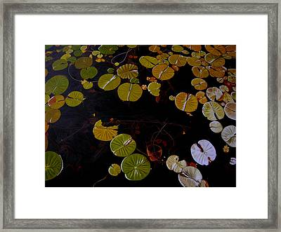 Framed Print featuring the painting Lake Washington Lilypad 8 by Thu Nguyen