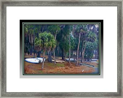 Lake Wauburg Rain Framed Print
