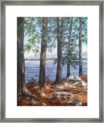 Lake Winnepesaukee Framed Print