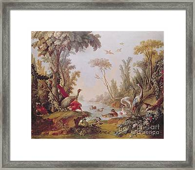 Lake With Geese Storks Parrots And Herons Framed Print by Francois Boucher