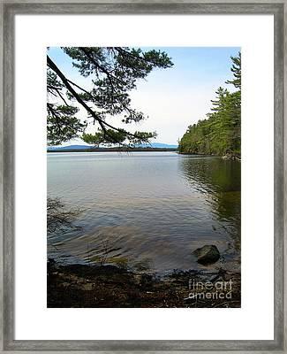 Lake's Outlook Framed Print