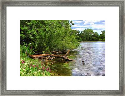 Lakeside Blossoms Framed Print