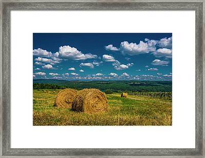 Framed Print featuring the photograph Lakeside Hayfield I by Steven Ainsworth