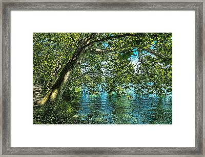 Lakeside In The Parc Tete Dor Framed Print