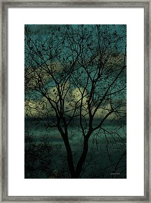 Lakeside Morning Framed Print