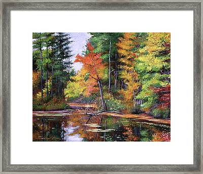 Lakeside Reflections Framed Print by David Lloyd Glover