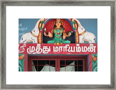 Lakshmi And Her Elephants, Valparai Framed Print