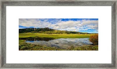 Lamar Spring Reflections Framed Print by Greg Norrell