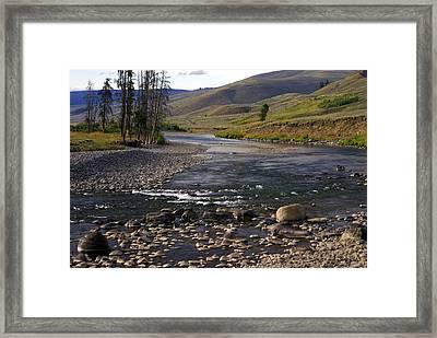 Lamar Valley 3 Framed Print by Marty Koch