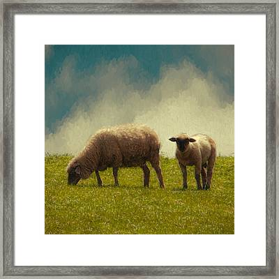 Lamb And Mother Framed Print by John K Woodruff