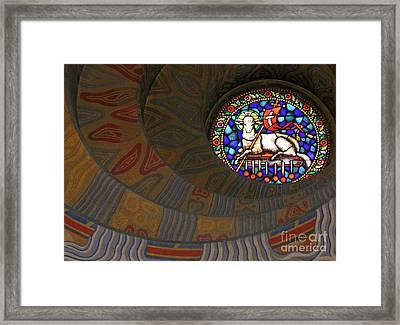 Lamb Of God Framed Print by Ann Horn