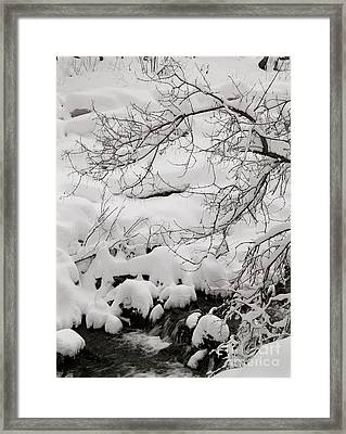 Lambs Canyon In Winter Framed Print by Dennis Hammer