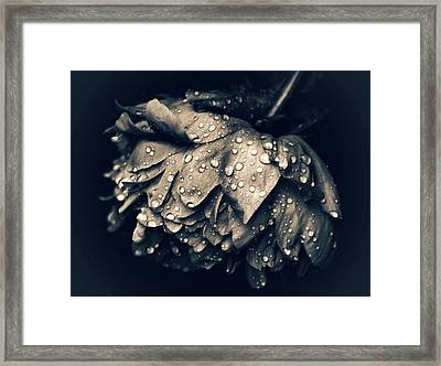 Lament Framed Print