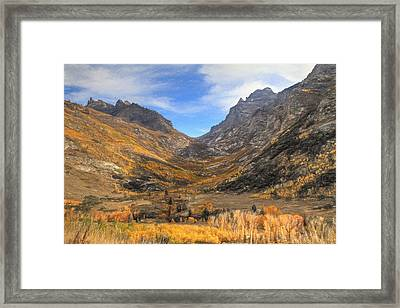 Lamoille Canyon Framed Print by Donna Kennedy