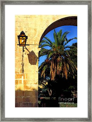 Lamp And Palm Upper Barracca Gardens Framed Print by Thomas R Fletcher