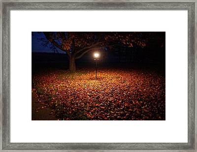 Framed Print featuring the photograph Lamp-lit Leaves by Lars Lentz