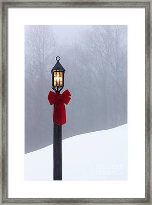 Lamppost In Snow Framed Print by Will and Deni McIntyre