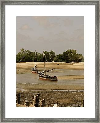 Lamu Island - Wooden Fishing Dhows At Low Tide With Pier - Antique Framed Print