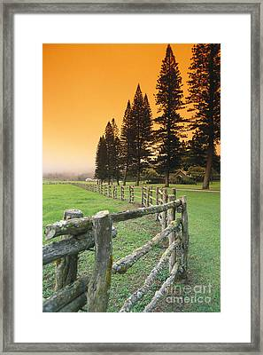 Lanai, City View Framed Print by Ron Dahlquist - Printscapes