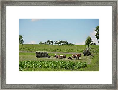 Lancaster County Pennslyvania  - The Amish Framed Print by Bill Cannon