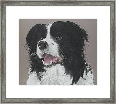 Lance Framed Print by Joanne Simpson