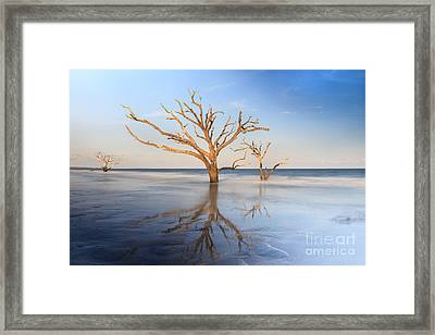 Land And Sea Framed Print