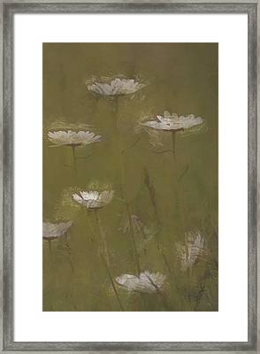 Land Of Daisies Framed Print by The Art Of Marilyn Ridoutt-Greene
