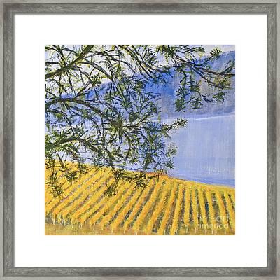 Land Of Golden Harvest Framed Print by Angela Maher