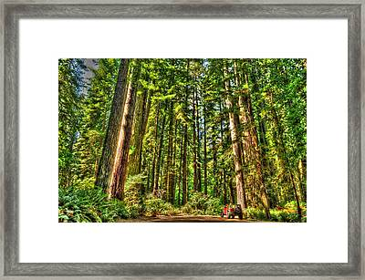 Land Of The Giants Framed Print