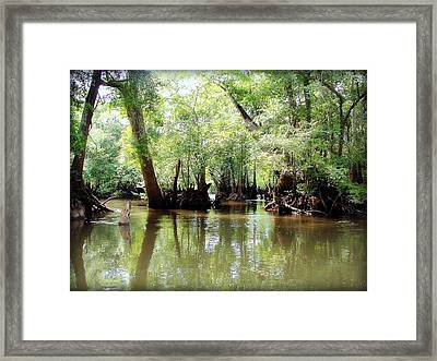Land Of The Lost Framed Print by Debra Forand