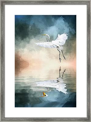 Landing At Dawn Framed Print by Cyndy Doty